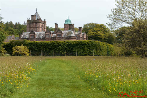 Holker Hall, Gardens, Meadow, What To Do, Nick Thorne Bodian Photography